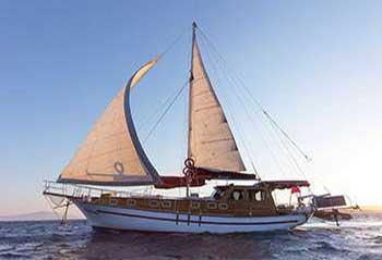 Sea Star I